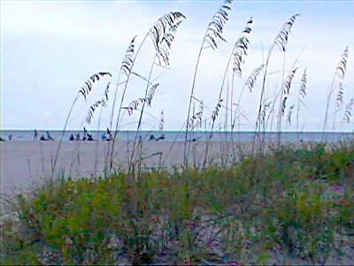 Sand Key Park, Clearwater Beach, Florida