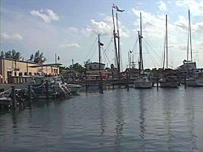 Key West docks ( Blight area )