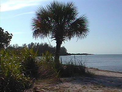 Fort Desota - St. Petersburg, Florida