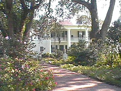 Plantation near New Orleans, Louisianna